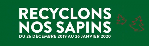 sapin-de-noel,recyclage,9e,10e,18e