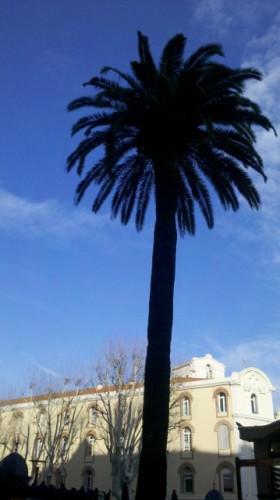 vacances,perpignan,place-Arago