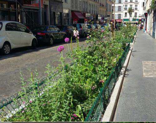 Paris, paris 9e, espaces verts,