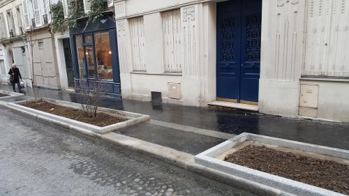 paris,voirie,végétalisation,espace public