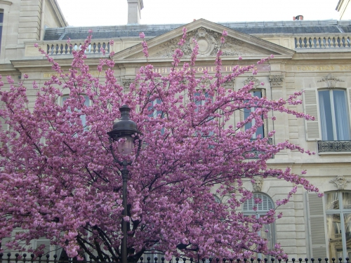 paris,patrimoine,architecture