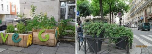 paris,10e,espaces-verts,végétalisation,du-vert-près-de-chez-moi,dans-ma-rue