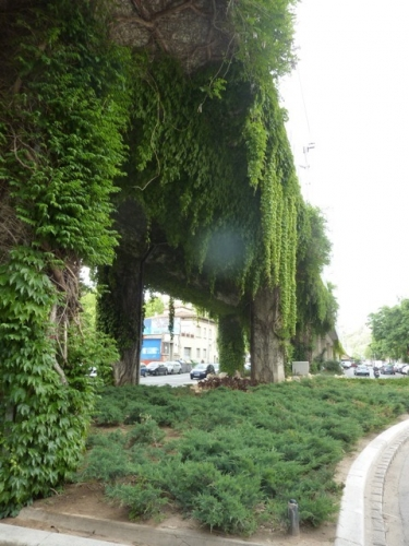 paris,18e,promenade-urbaine,barbès,stalingrad,chapelle