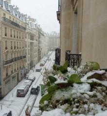 PHOTOS --- neige 9e - à l'ouest.JPG