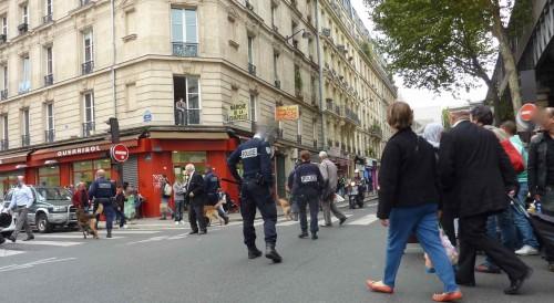 paris,marché-de-la-chapelle,opération-de-police,chiens-policiers