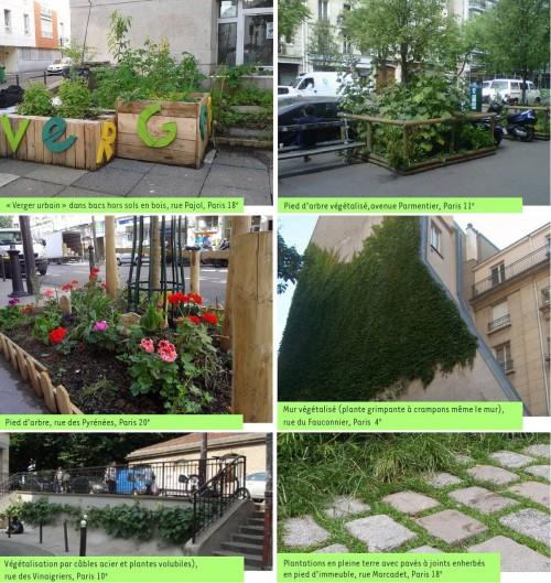 végétalisation,dans-ma-rue,du-vert-près-de-chez-moi