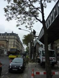 paris,Barbès,boulevard-de-la-Chapelle,marché-de-Barbès