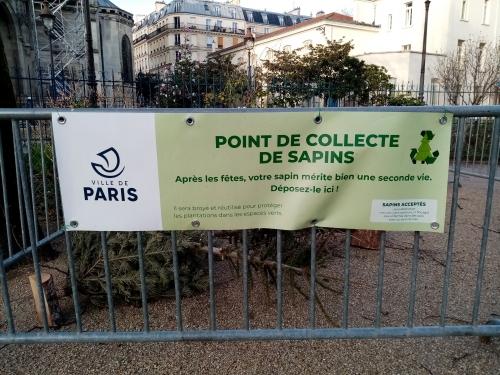 sapin-de-noel,recyclage,collecte,9e,10e,18e
